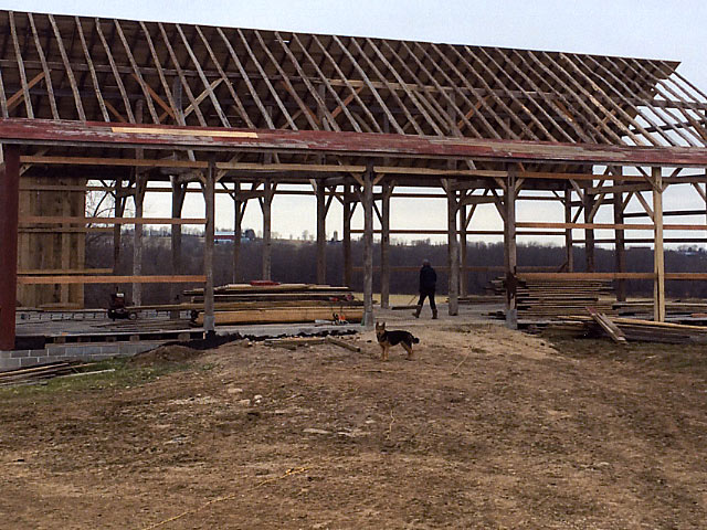 Adding roof planks to new barn